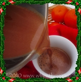 Pour yourself a cup of Thermomix hot chocolate