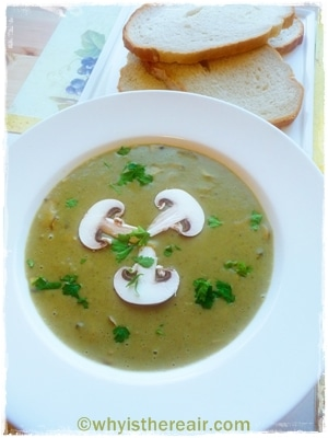 Thermomix Mushroom Soup keeps you fuller for longer
