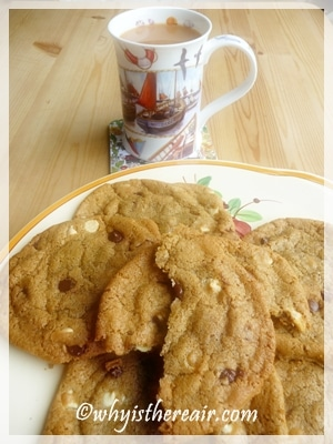 Monster Cookies For Your Cookie Monsters Madame Thermomix S Chewy