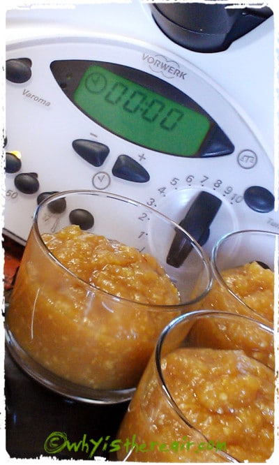 Madame Thermomix's Apple and Hazelnut Chutney is fast and easy in your Thermomix!