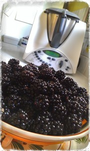 Blackberries grow wild in Tongham Community Wood and make a fresh and delicious dessert with Thermomix